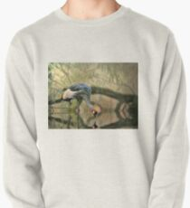 Crane Reflections Pullover