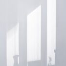 Window Light Reverie by Menega  Sabidussi