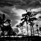 Gold Coast in classic BW by Kornrawiee