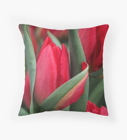 Tulip Fever Throw Pillow