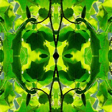 Green Heart of the Tulip Poplar 4699 Pattern by candypaull