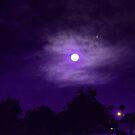 Starlight by Moonlight by TLCGraphics