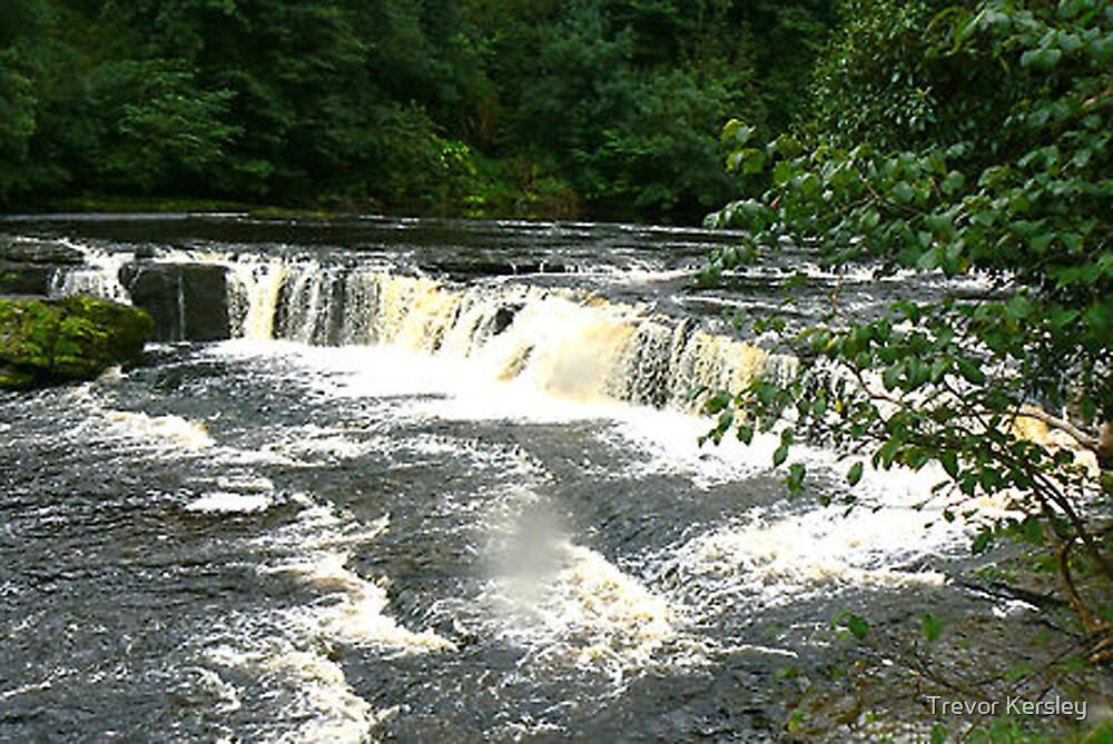 Aysgarth Falls - North Yorkshire by Trevor Kersley