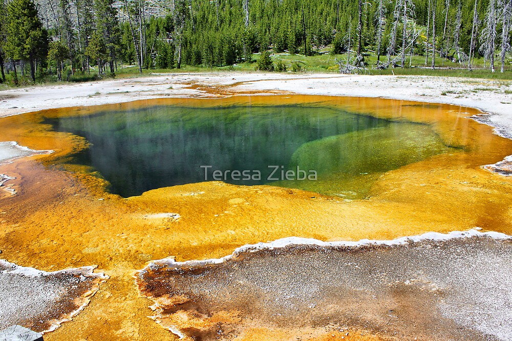 Emerald Pool by Teresa Zieba