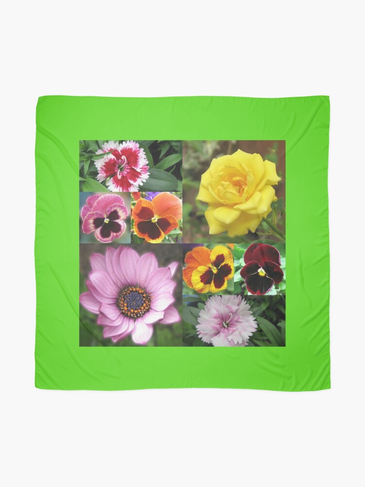 Alternative Ansicht von Sunkissed Summer Flowers Collage - ungerahmt Tuch