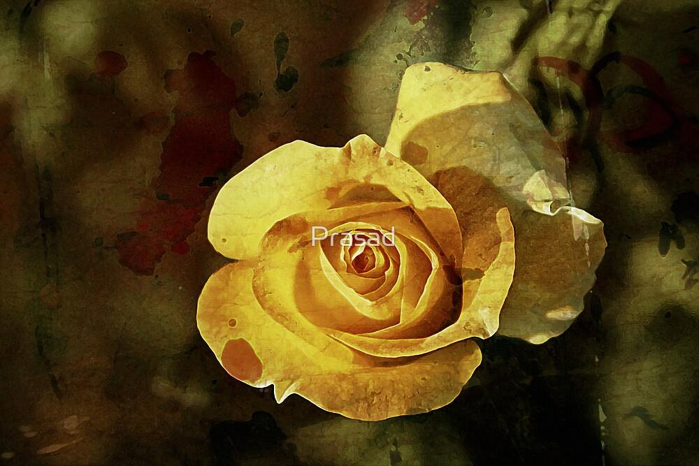 Rust 'n Roses #2 by Prasad