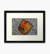 Road kill Framed Print