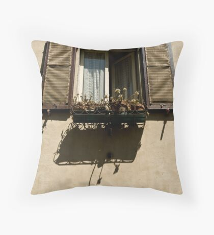 window with flowers Throw Pillow