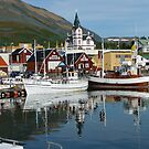 Husavik Iceland by pucci ferraris