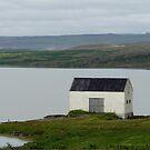 Egilsstadir-Iceland by pucci ferraris
