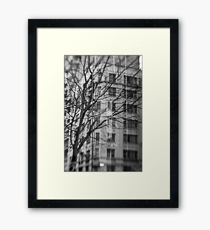 Wintry Reflection - Sydney - Australia Framed Print