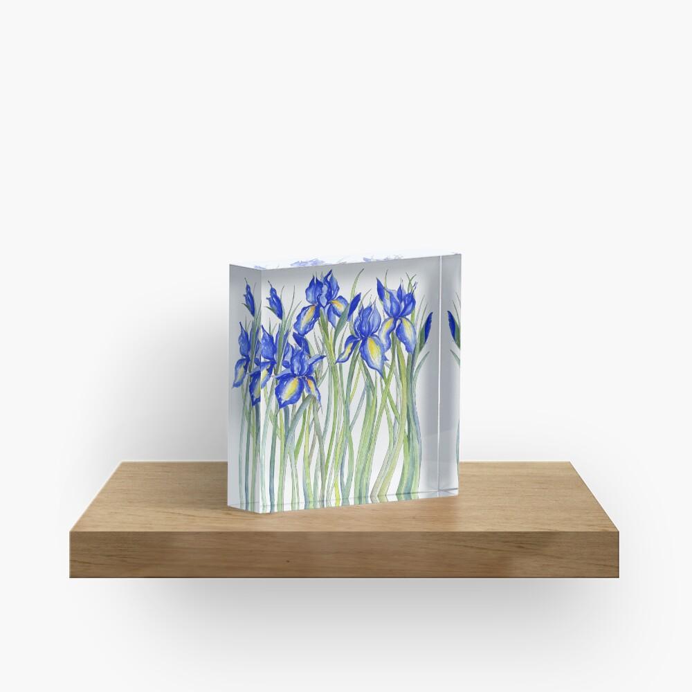 Blue Iris, Illustration Acrylic Block