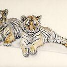 Tigercubs by J-C Saint-Pô