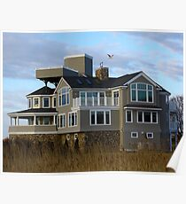 Rye Mansion and Seagull Poster