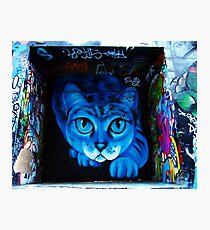 Hosier Lane Cat Photographic Print