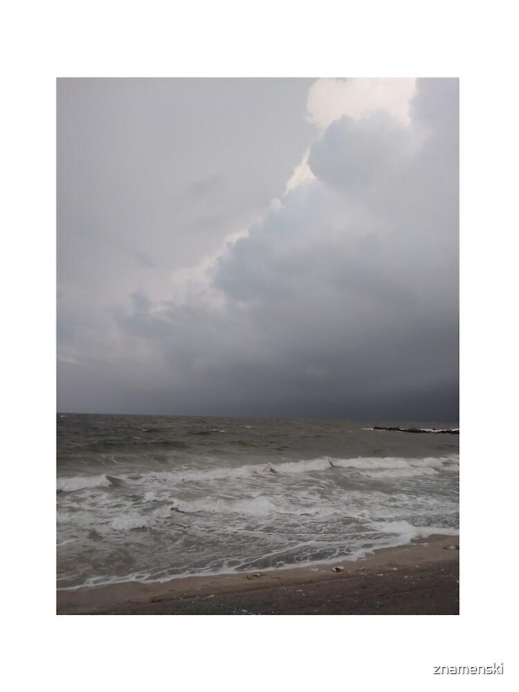 Coney Island - New York, #Coney, #Island, #New, #York, #ConeyIsland, #NewYork, #sea by znamenski