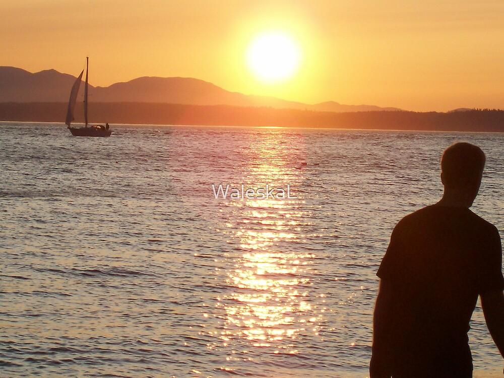 Sun Dancer by WaleskaL