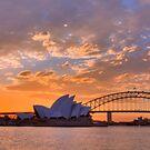 Sunset Sydney Harbour - Australia by Bryan Freeman