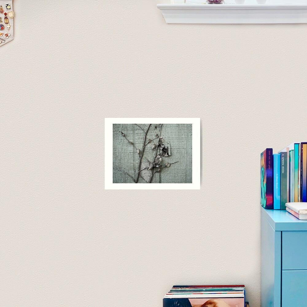Old Paint with Vines Art Print