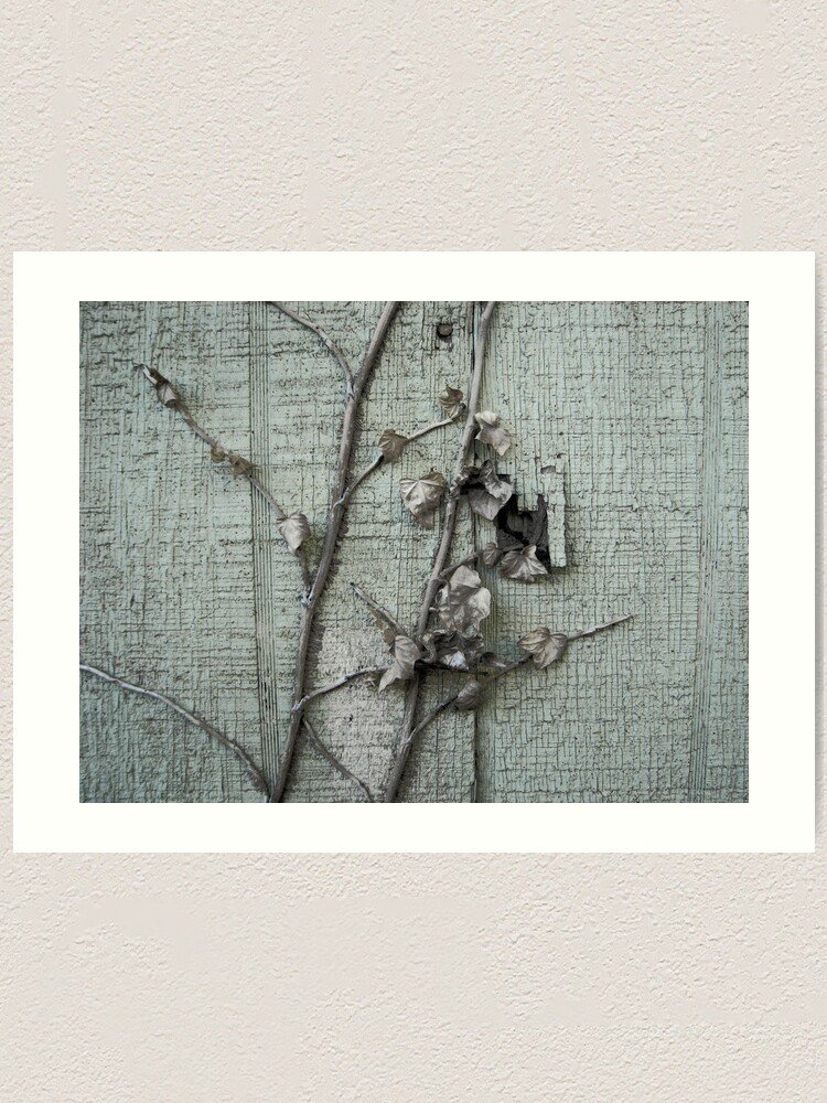 Alternate view of Old Paint with Vines Art Print