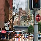 Rain, Rain Go AWAY!  Sydney - Australia by Bryan Freeman