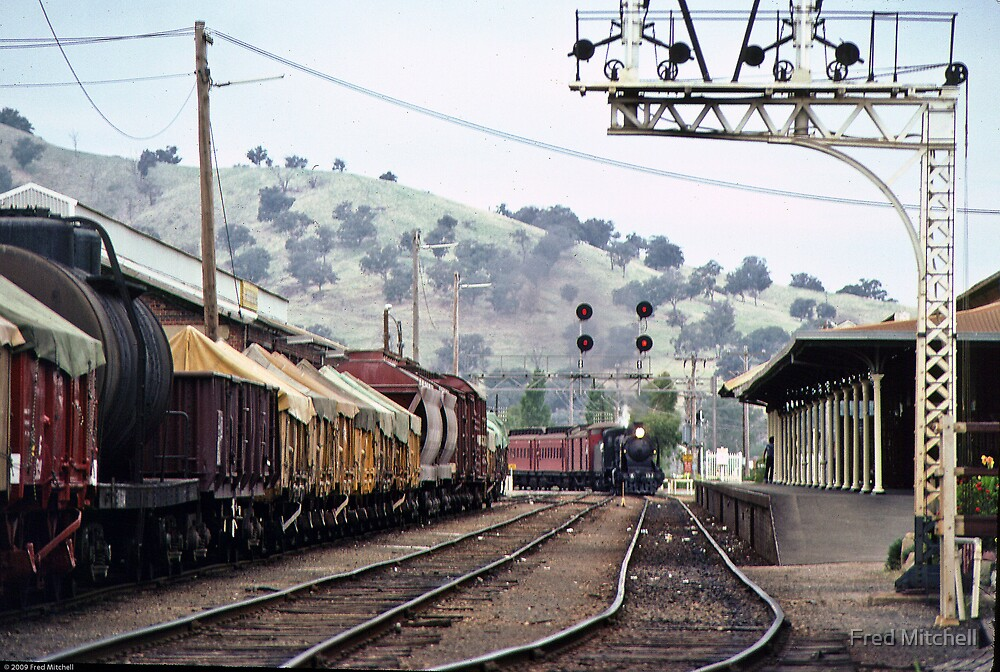 Wodonga RS 19810300 0040 by Fred Mitchell
