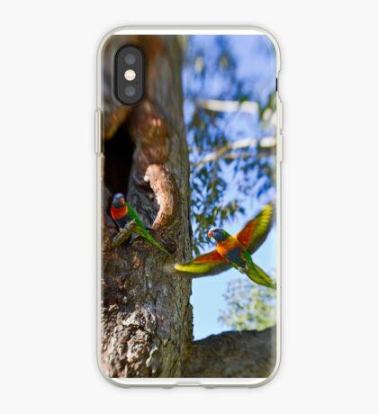 Rainbow Lorikeets - Sydney - Australia iPhone Case