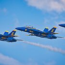 Blue Angels by TJ Baccari Photography