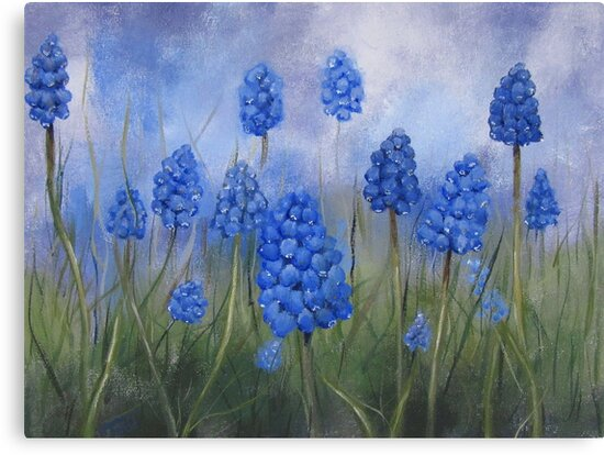 Grape Hyacinth by Tanja Udelhofen