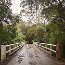 Crossing the Yarra by Linda Lees