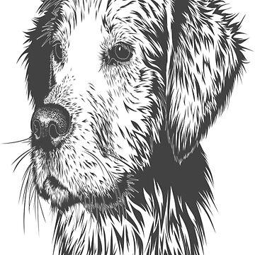 Dog by Armin035