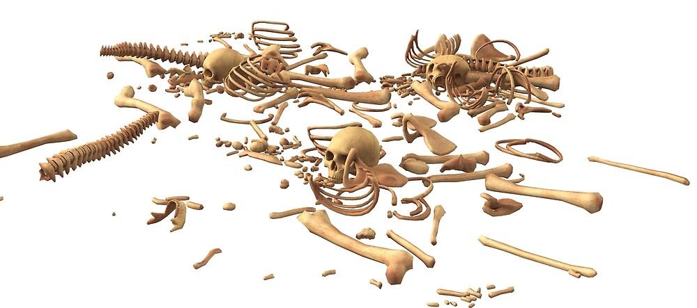 skeleton by martin80