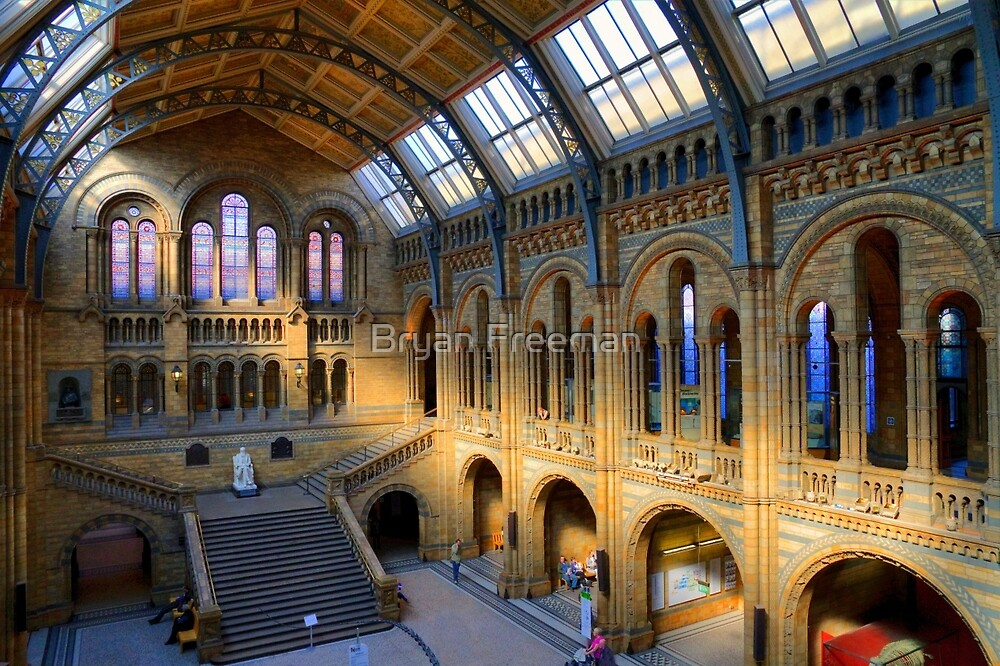 Natural History Museum - A Different Side - London by Bryan Freeman