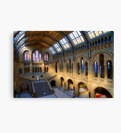 Natural History Museum - A Different Side - London Canvas Print