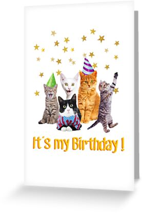 Its My Birthday Cute Cats In Party Hats