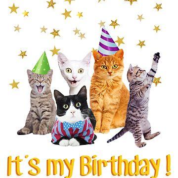 It's my birthday cute cats in party hats! by MazzaLuzza