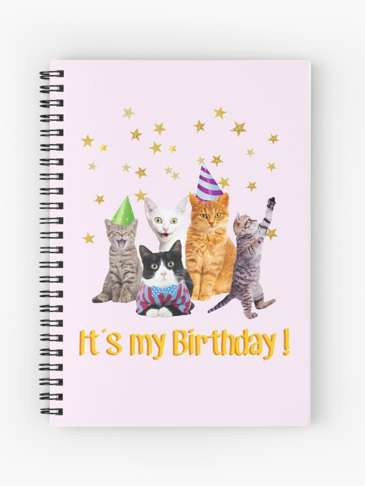 Its My Birthday Cute Cats In Party Hats Spiral Notebook