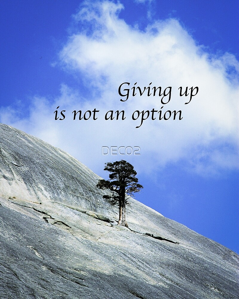 Giving Up Is Not An Option  by DEC02