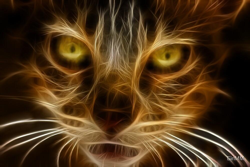 Fire Cat by EinMM by EinMM