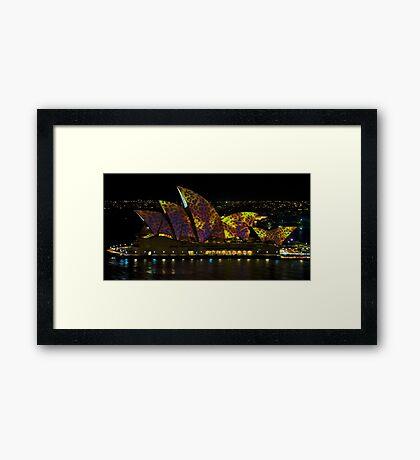 The Leopard - Sydney Opera House - Australia Framed Print