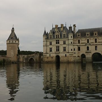Europe, France, Loire, Castles, Chenonceau, Water, Photography, BebiCervin by BebiCervin