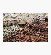 the tanneries  Photographic Print