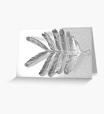 acacia mearnsii black wattle 7 Greeting Card