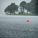'L'  by dinghysailor1