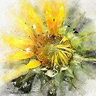 Painted Sunflower by Teresa Zieba