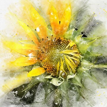Painted Sunflower by tenia115