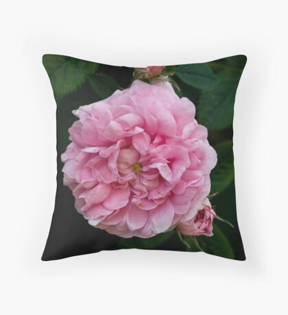 Rose and buds Throw Pillow