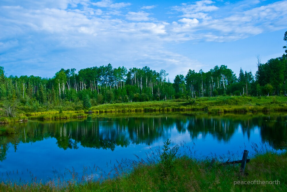 A Northern BC Summer Scene by peaceofthenorth
