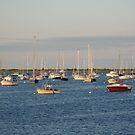 Harbor at dusk by Susan Misicka