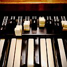 Hammond B3 Organ by Douglas E.  Welch